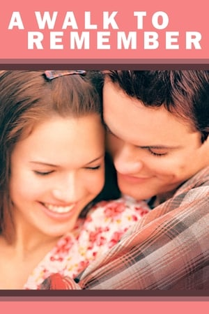 11 Best Movies Like A Walk To Remember ...