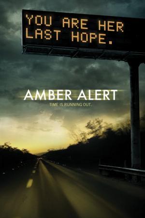 13 Best Movies Like Amber Alert ...