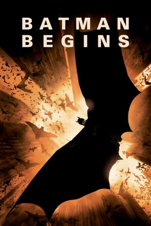 12 Best Movies Like Batman ...
