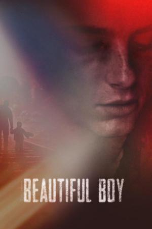 13 Best Movies Like Beautiful Boy ...