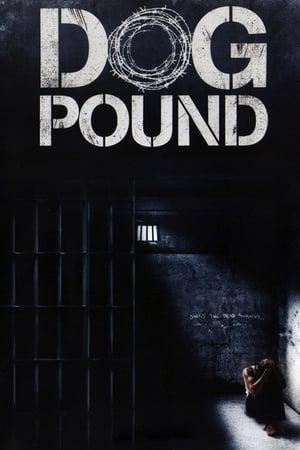 13 Best Movies Like Dog Pound ...