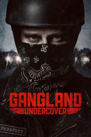 12 Best Shows Like Gangland ...