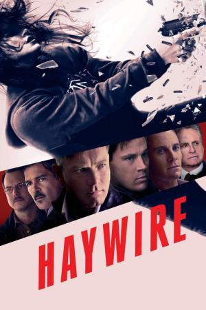 14 Best Movies Like Haywire ...