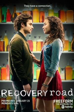 11 Best Shows Like Recovery Road ...