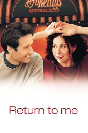 11 Best Movies Like Return To Me ...