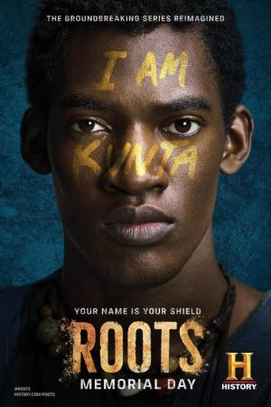 10 Best Movies Like Roots ...