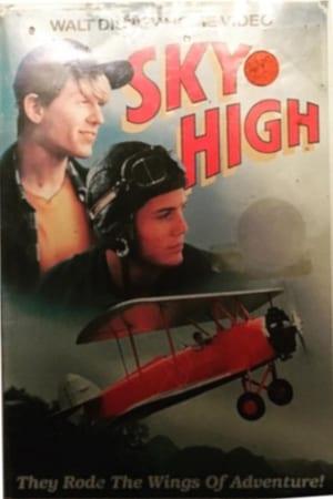 11 Best Movies Like Sky High ...