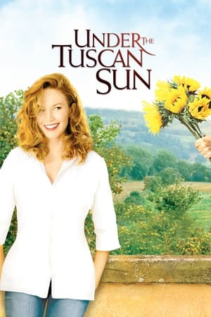 11 Best Movies Like Under The Tuscan Sun ...