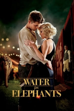 12 Best Movies Similar To Water For Elephants ...