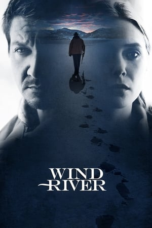 12 Best Movies Like Wind River ...