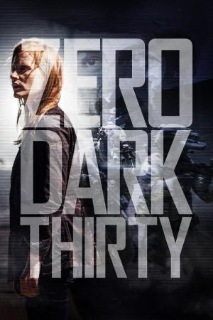 12 Best Movies Like Zero Dark Thirty ...