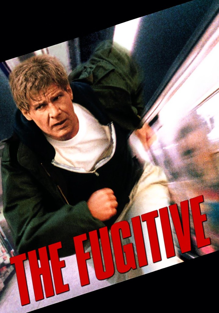 14 Best Movies Like The Fugitive ...